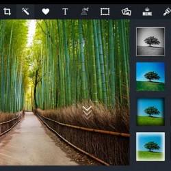 Pizap pagina online de efectos y stickers divertidos para fotos